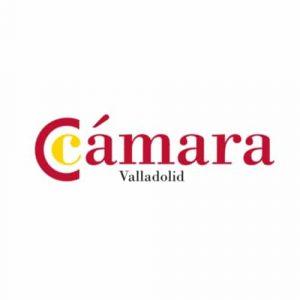 Proyecto sector turismo de Valladolid: Objetivo China