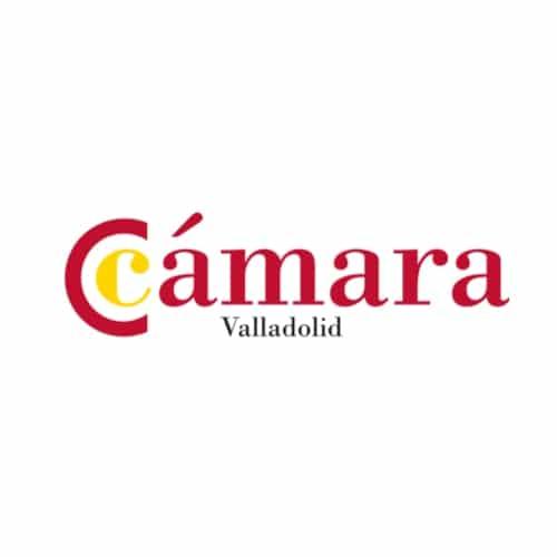 Lee más sobre el artículo Proyecto sector turismo de Valladolid: Objetivo China